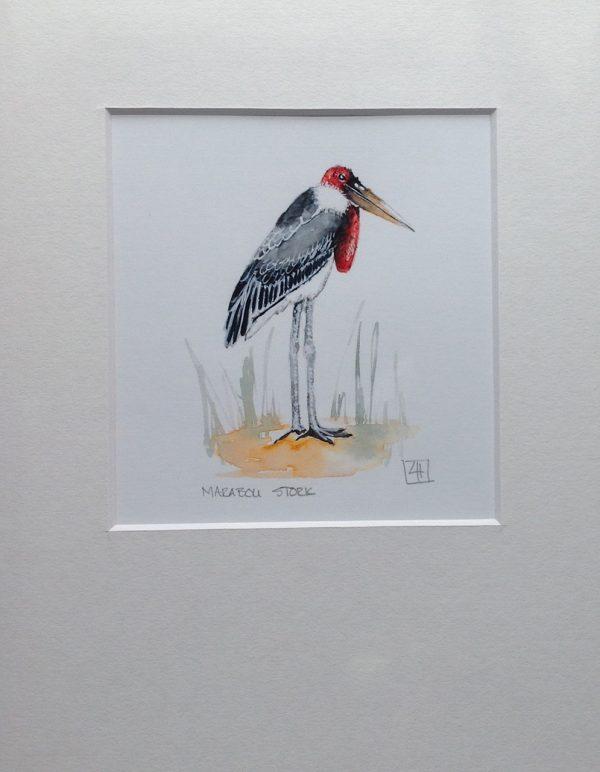 01 Marabou Stork