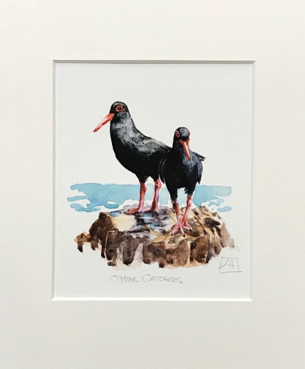04 Oyster Catchers