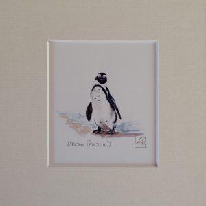 06 African Penguin 2