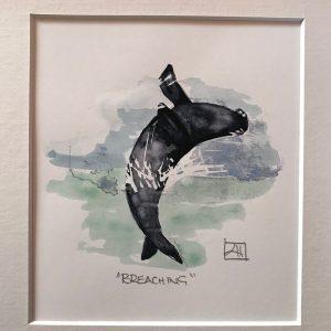 07 Breaching Whale