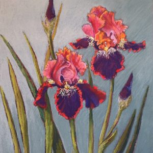 Pastel Painting 'Red Irises' on paper 61x51cm by Louise Hennigs